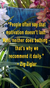 motivational quote by Zig Ziglar
